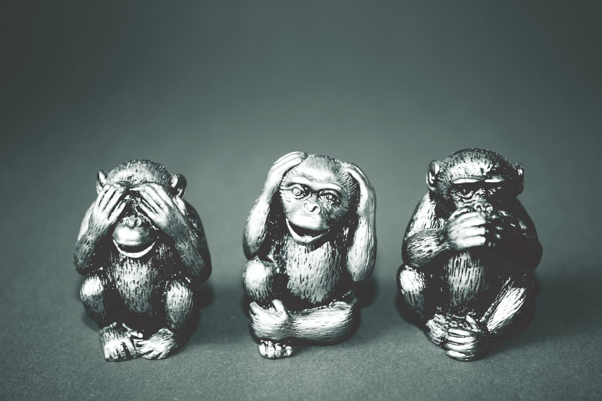 Monkey Mind und The Work